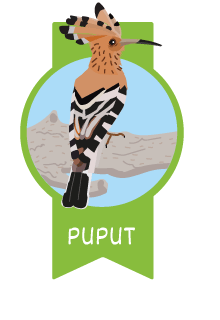 laiaiadelmaresme-medalla-puput